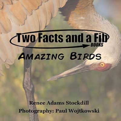 Two Facts and a Fib: Amazing Birds